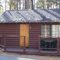 Studio Cabin with Kitchen