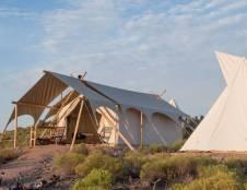 Safari Tent (Shared Bath) with Adjacent Hive