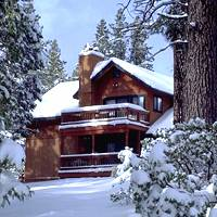 Yosemite Pines