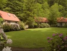 Hideaway Cottages