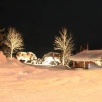 Hibernation Station in Winter Time