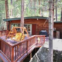 the-tree-house-1l_9