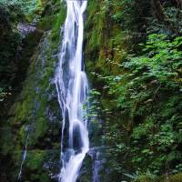 Olympic Peninsula Waterfall Trail