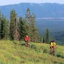 whitefish mountain biking