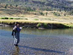 Fly fishing in Yellowstone park