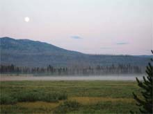 misty valley in Yellowstone park