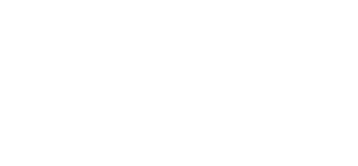DetailsPal Logo