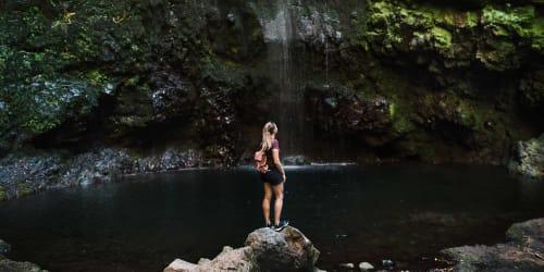Res till underbara och blomstrande Madeira