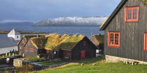 Vikingakryssning