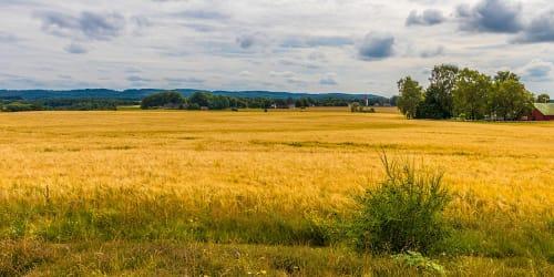 Gårdar i Halland