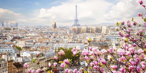 Franska höjdpunkter