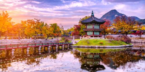 Sydkorea & Japan