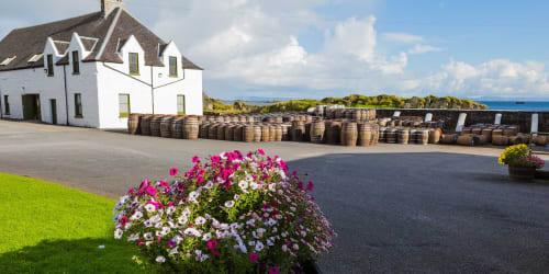 Skottland Whisky