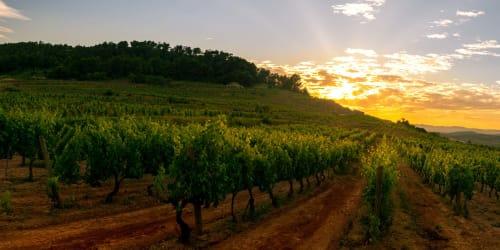 Spanska vinvägar