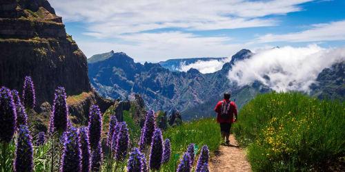Vandring Madeira