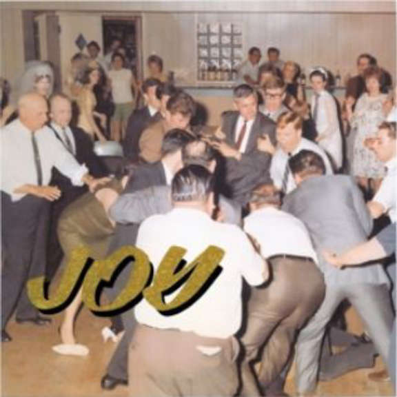 Idles Joy As An Act Of Resistance LP 2018