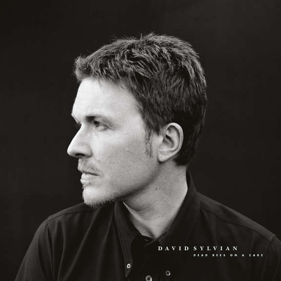 David Sylvian Dead Bees on a Cake LP 2018