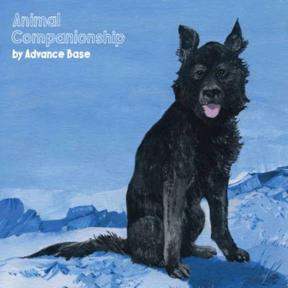 Advance Base Animal Companionship LP 2018