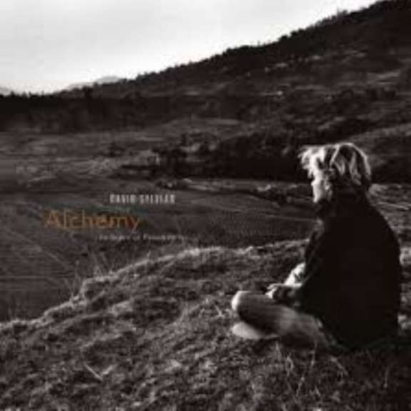 David Sylvian Alchemy - An Index of Possibilities LP 2019
