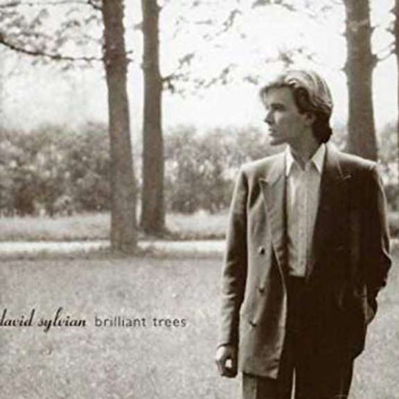 David Sylvian Brilliant Trees LP 2019