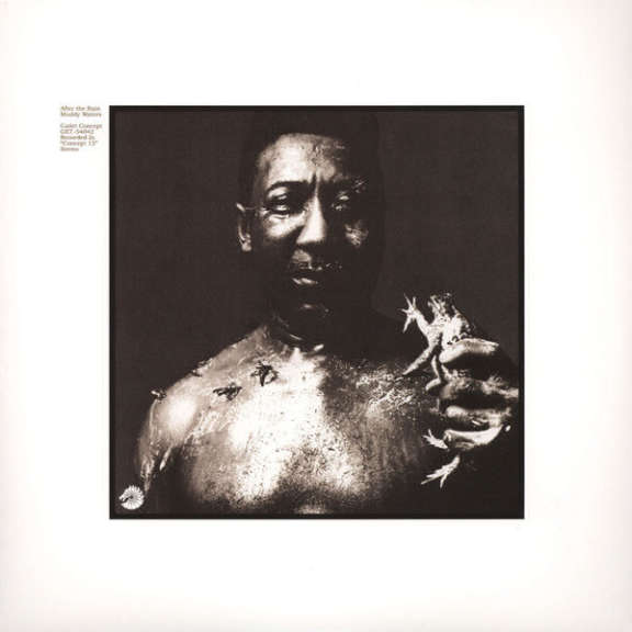 Muddy Waters After the Rain LP 2011