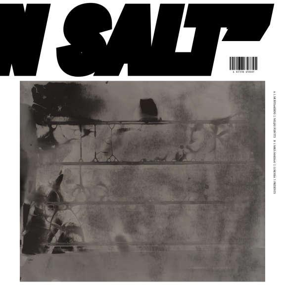 Pakasteet With Charles Hayward Molten Salt LP 2019