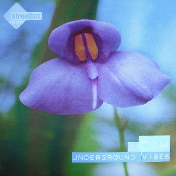 Dj Cam Underground Vibes LP 2019