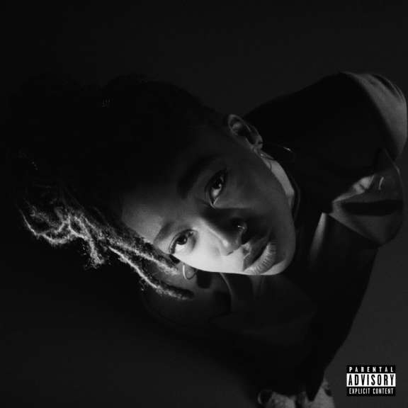 Little Simz Gray Area LP 2019