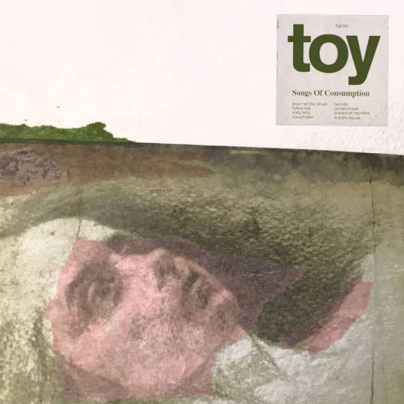 Toy Songs of Consumption LP 2019