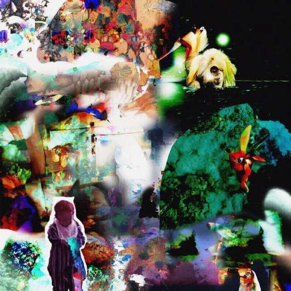 Acidhead Distractions LP 2019
