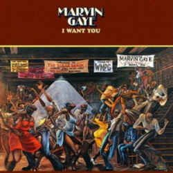 MARVIN GAYE I Want You 180G (UUSI LP) LP undefined