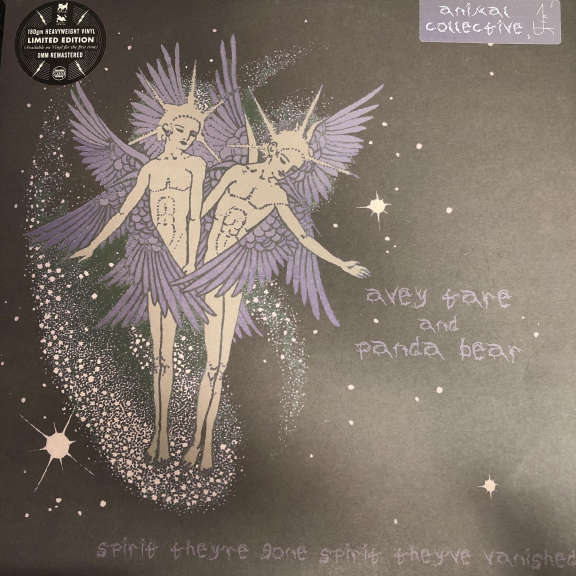 Avey Tare And Panda Bear Spirit They're Gone Spirit They've Vanished LP 2012