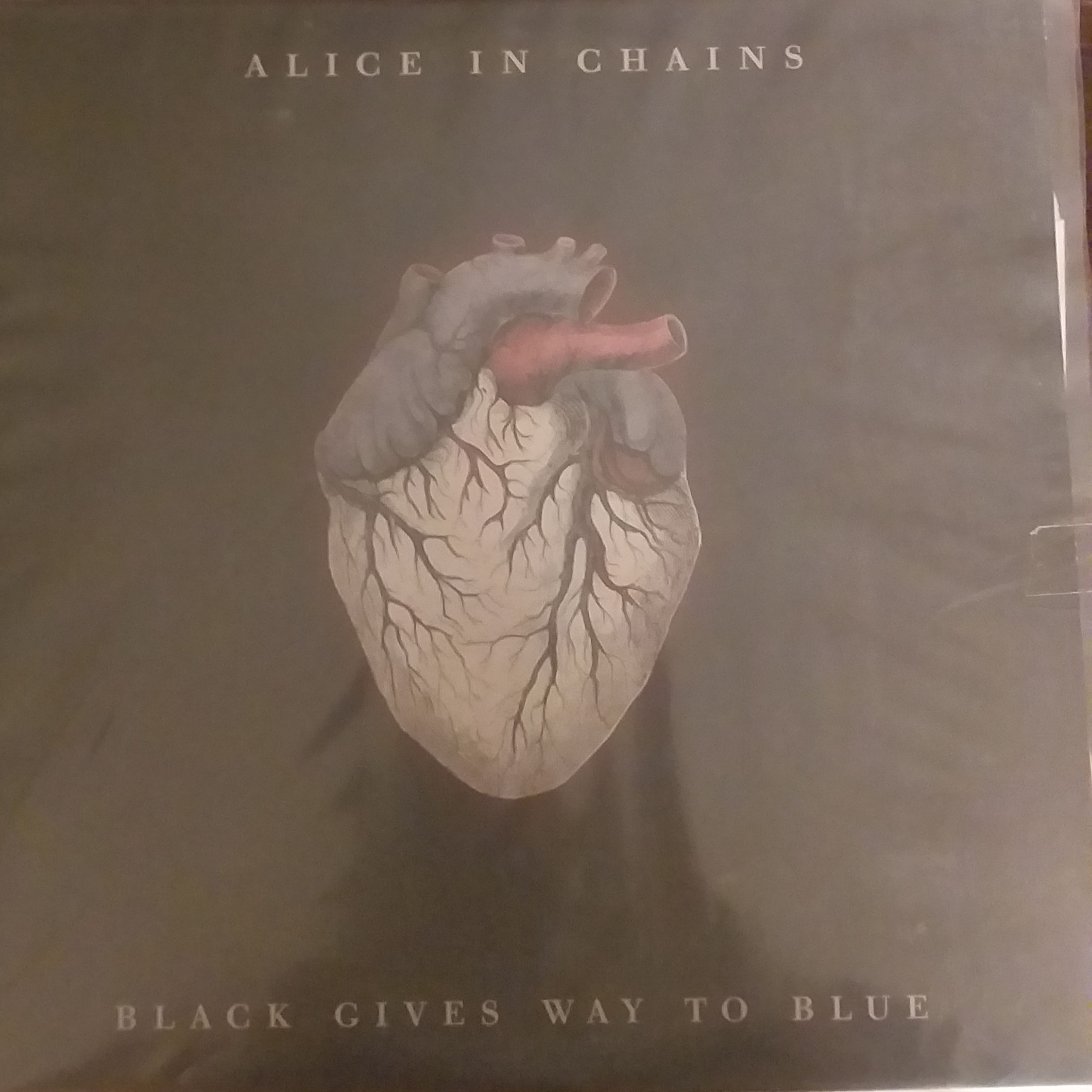 Alice in chains Black gives way to blue LP undefined