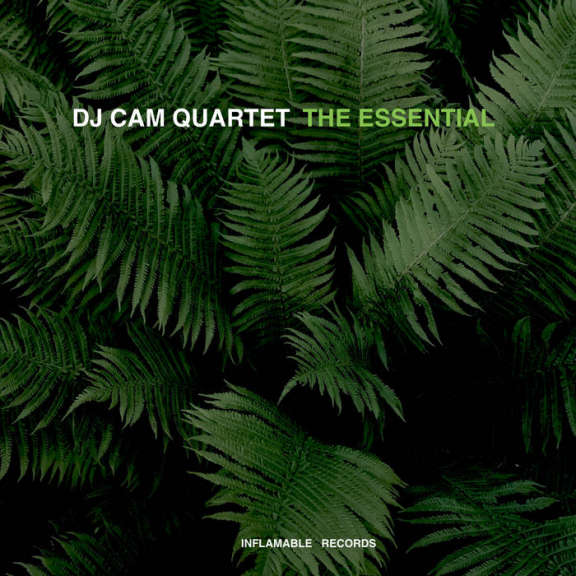 DJ Cam Quartet Essential LP 2020