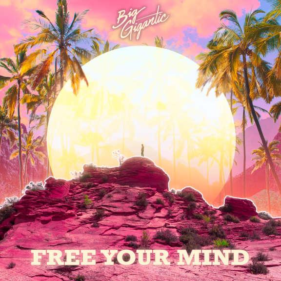 Big Gigantic Free Your Mind   LP 2020