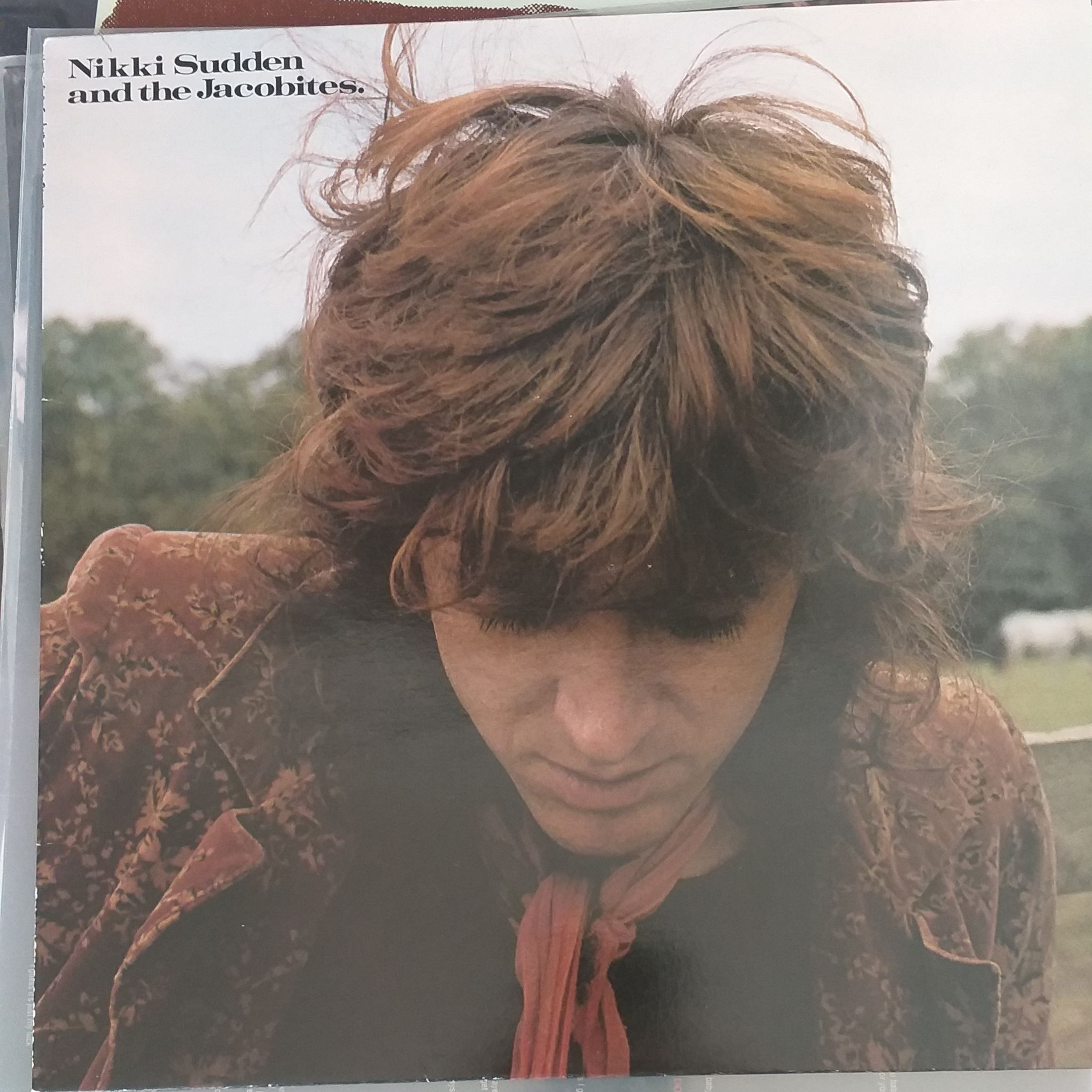 Nikki Sudden and the jacobites Texas LP undefined