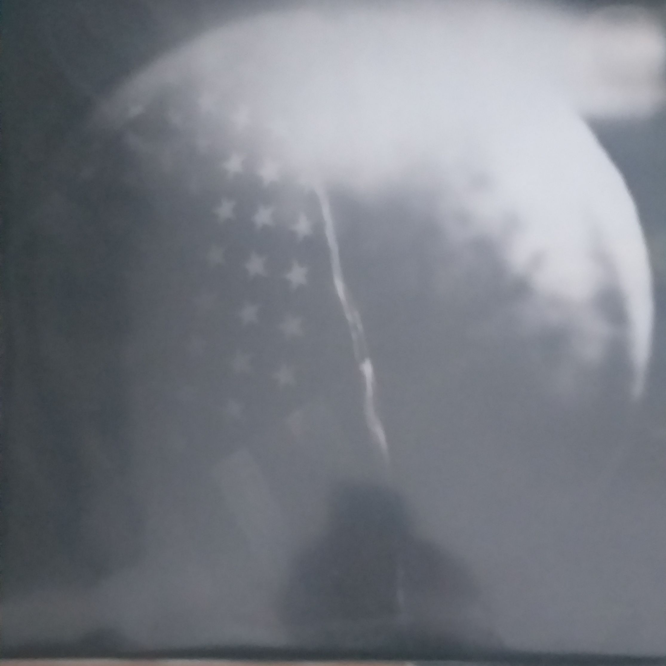 Red house painters Old Ramon LP undefined