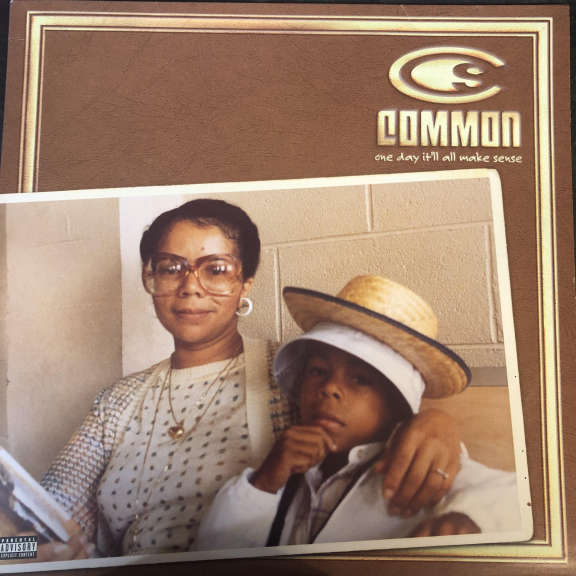 Common One Day It'll All Make Sense  LP 0