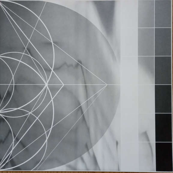 Ricardo Donoso Assimilating The Shadow LP 0