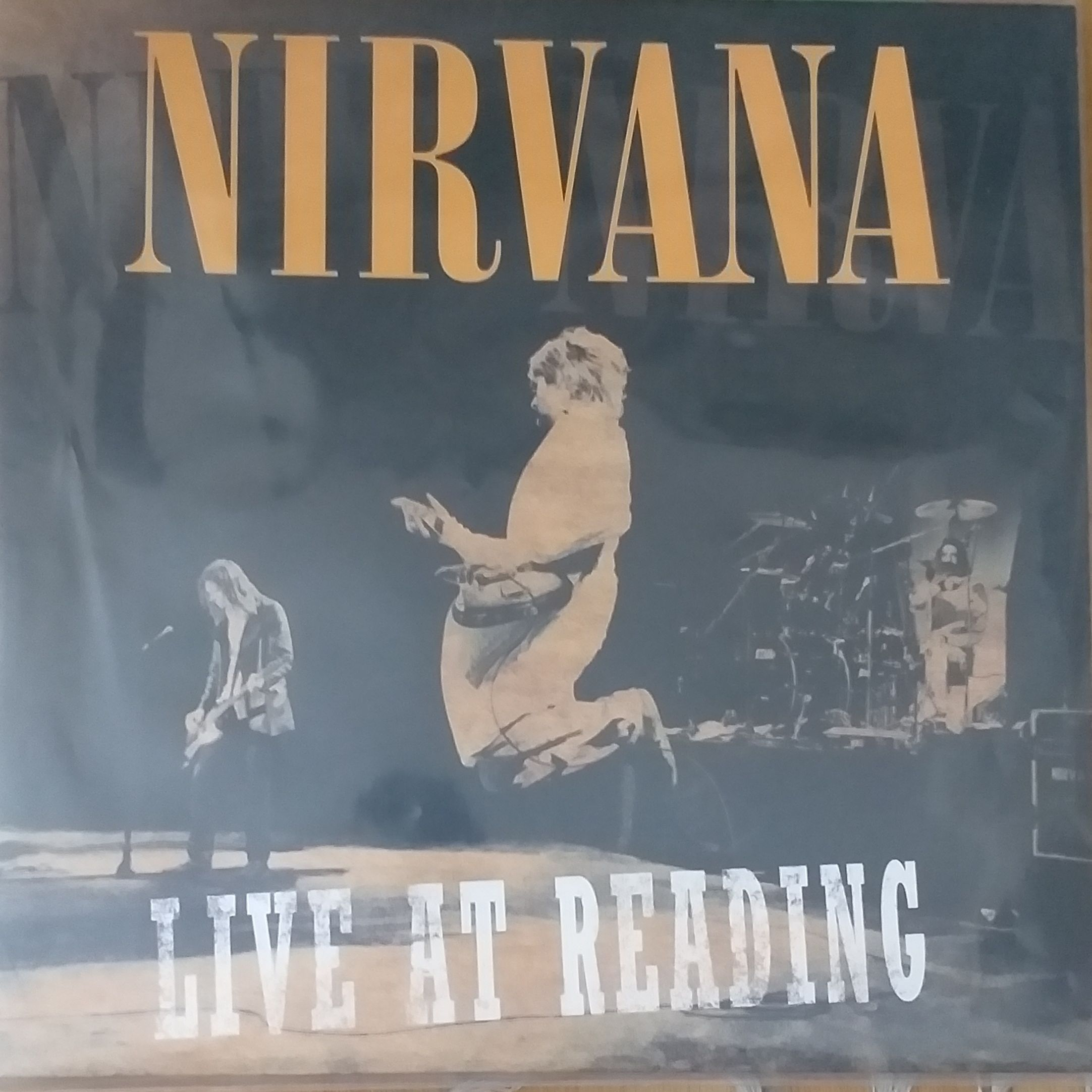 Nirvana Live at reading LP undefined