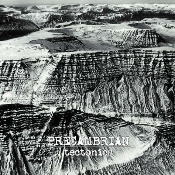 Precambrian Tectonics LP 2020