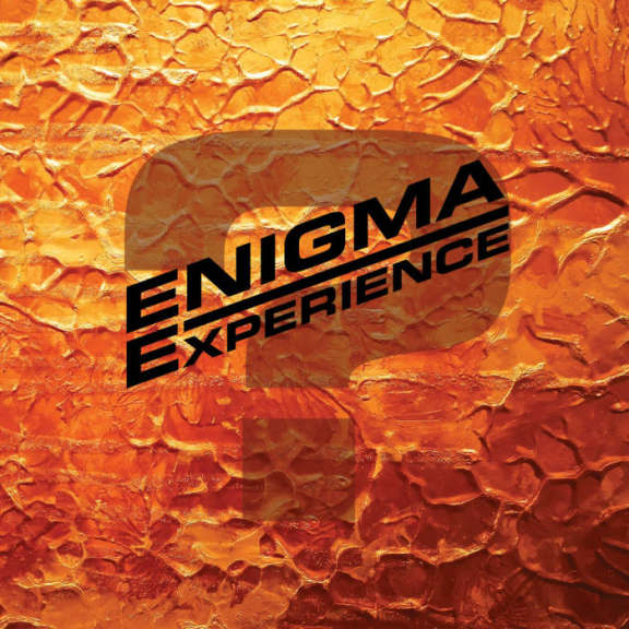 Enigma Experience Question Mark LP 2020