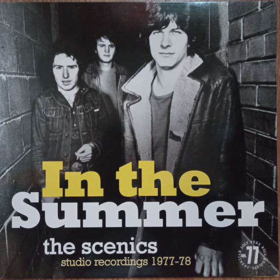 The Scenics In The Summer (Studio Recordings 1977-1978) LP 0