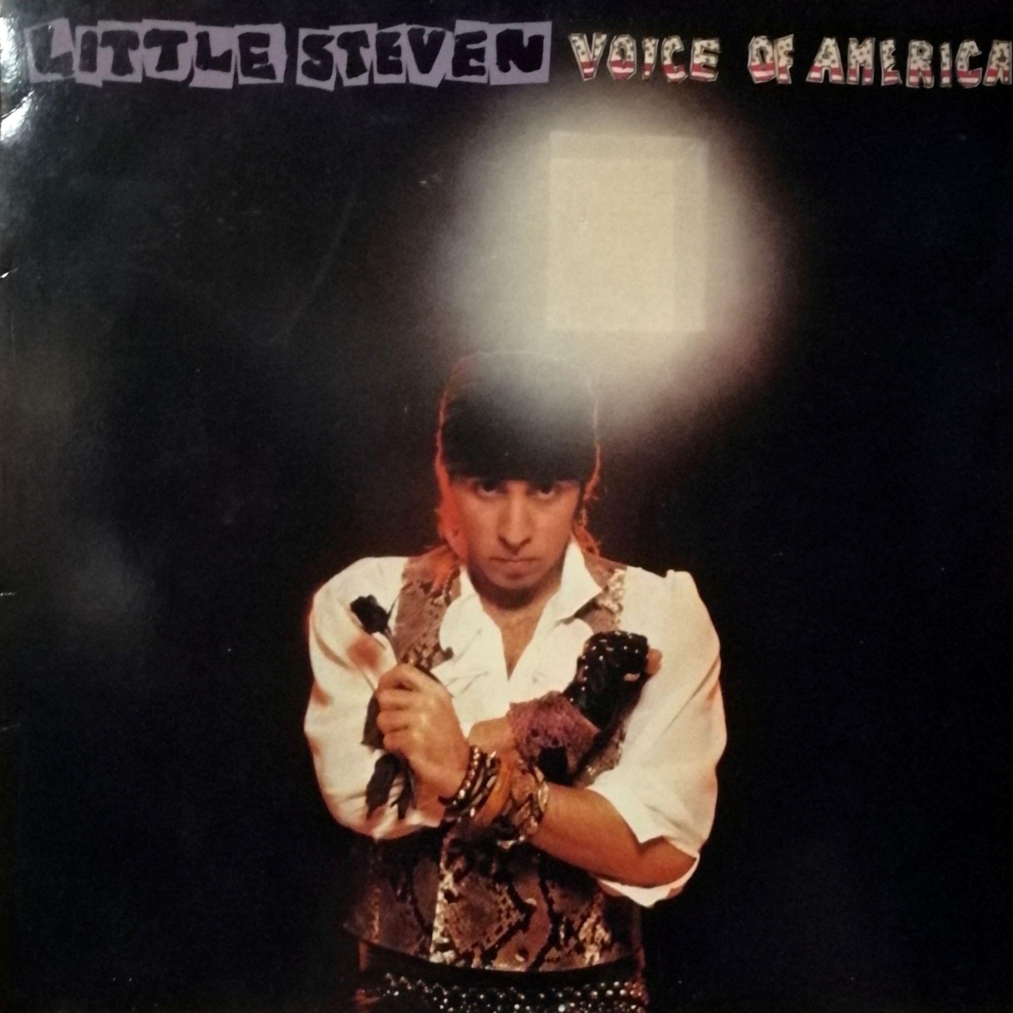 Little Steven Voice of America LP undefined