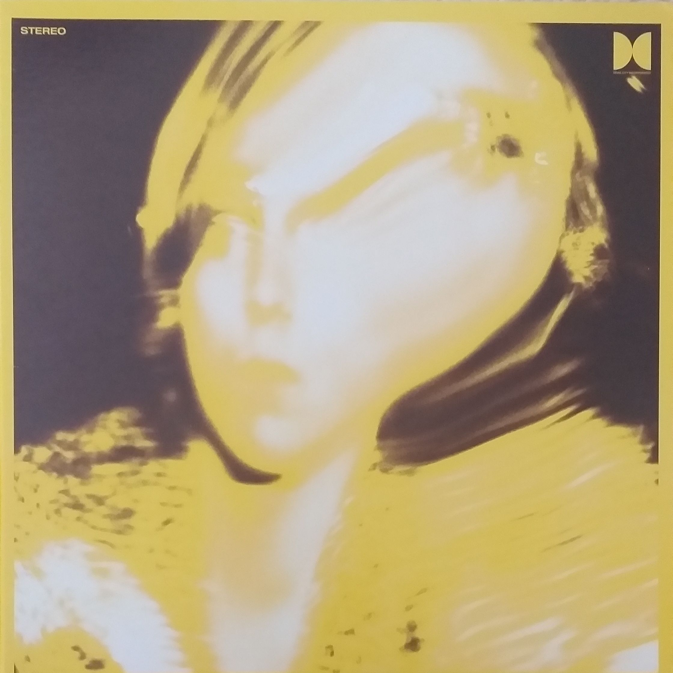 Ty Segall Twins LP undefined
