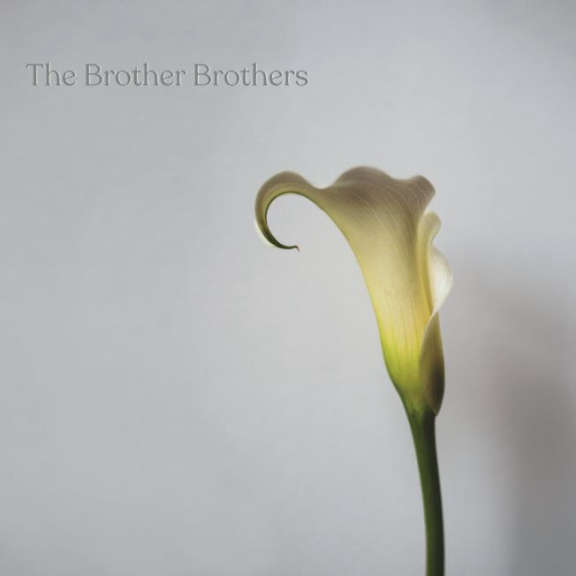 The Brother Brothers Calla Lily LP 2021