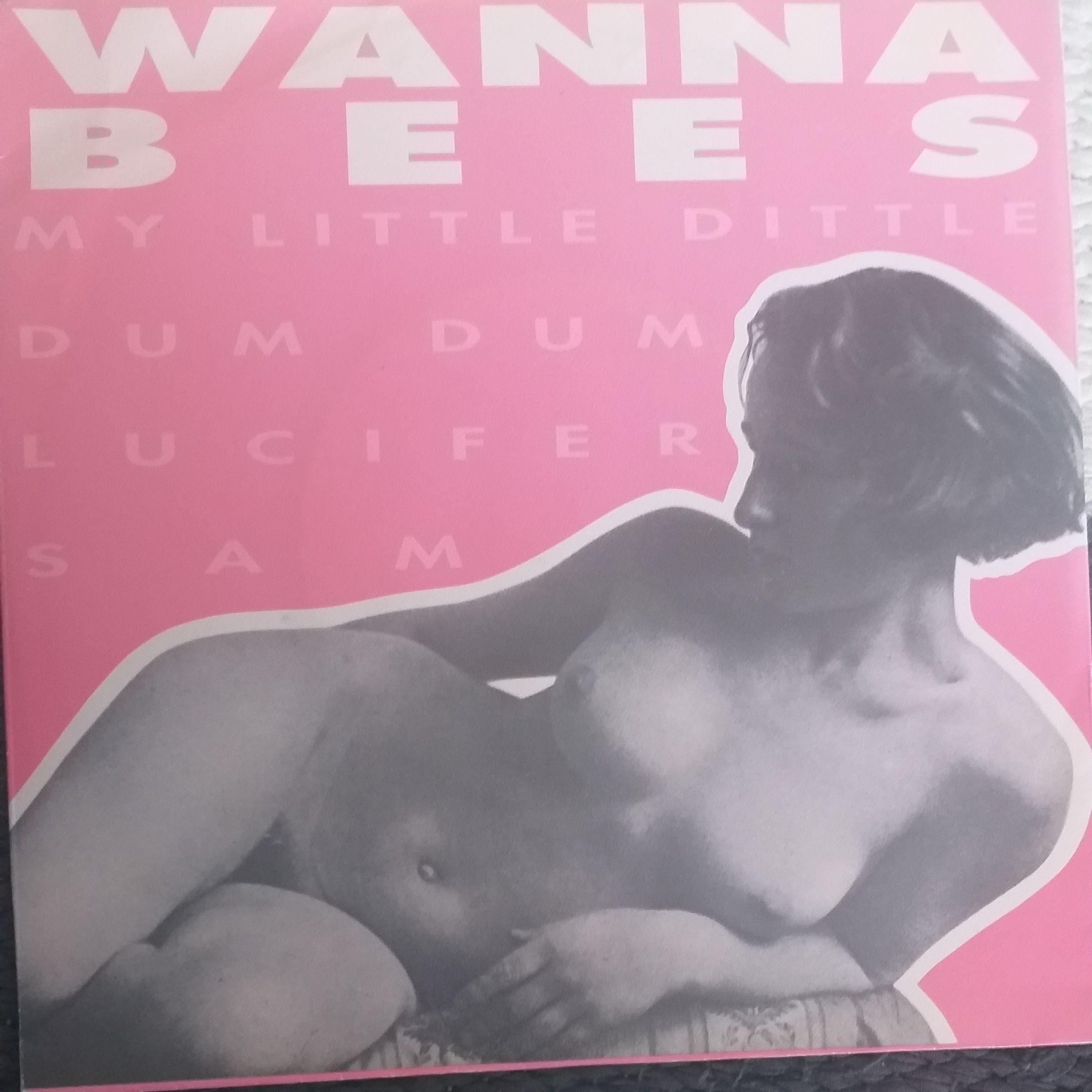 Wanna bees My little dittle dum LP undefined