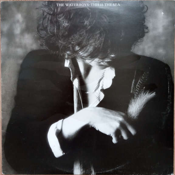 The Waterboys This Is The Sea   LP 0