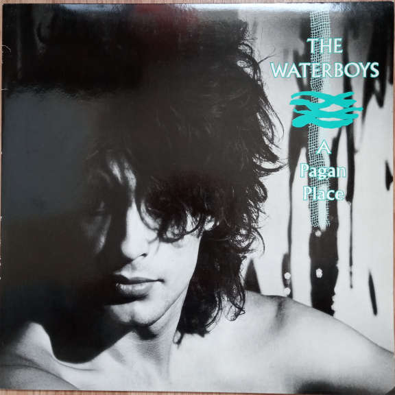 The Waterboys A Pagan Place  LP 0