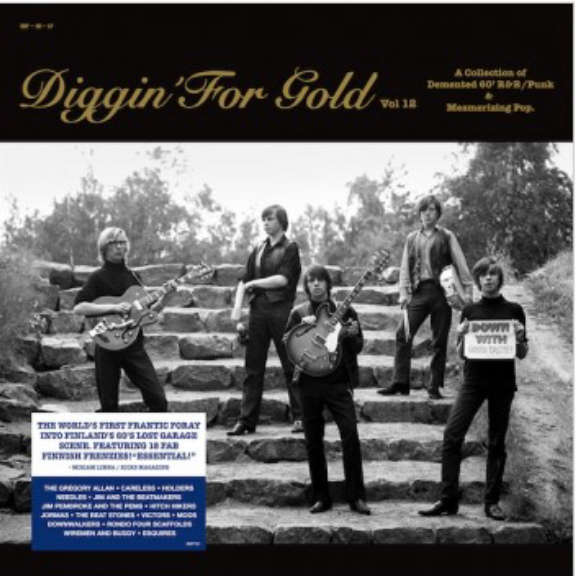 Various Diggin' For Gold Vol 12 LP 2021